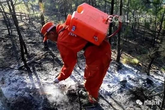木里俄亚发生森林火灾 500余人两天两夜搏斗灭火