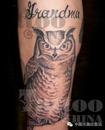 文化 正文  鉴于很多朋友都喜欢猫头鹰的纹身图案,小编特别为大家收集