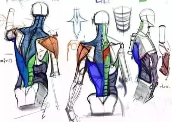 搜寻:人体器官及身体结构图!人体内脏位置分布图http://www.