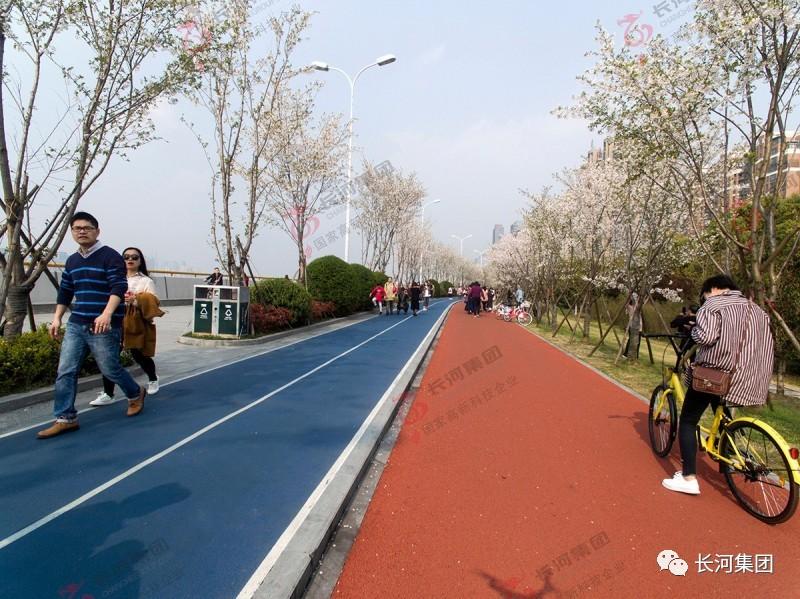 杭州见证樱花与跑道的最美之约