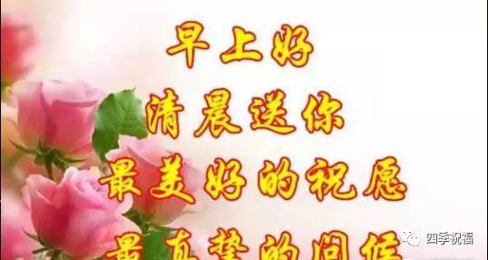 重阳节给父母祝福短信问候语