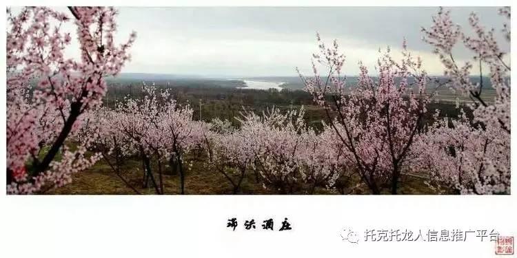 放风筝的收获   双河镇三小   五3班 把动人的情话捎给春天图片