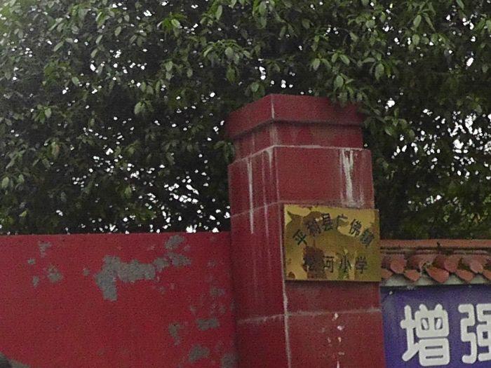 """陕西安康平利县:贫困户俩小女孩被""""精神病""""失学"""