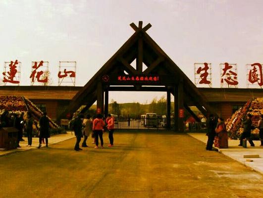 枣庄永安莲花山生态园郁金香盛开引八方来客