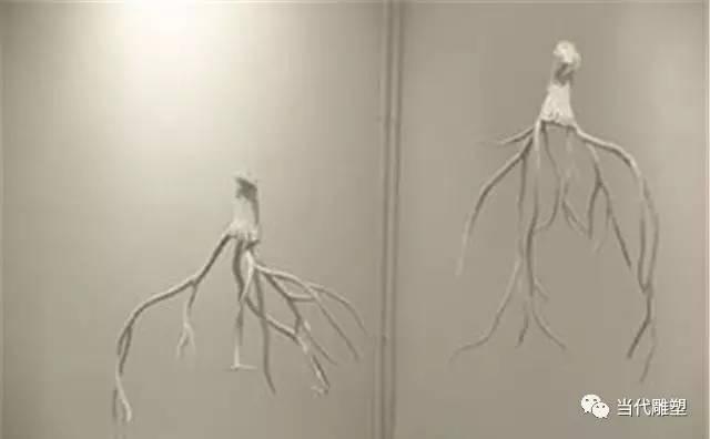 棉布树根雕塑