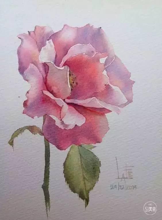 一朵娇艳欲滴的玫瑰怎么表现 用水彩呗图片