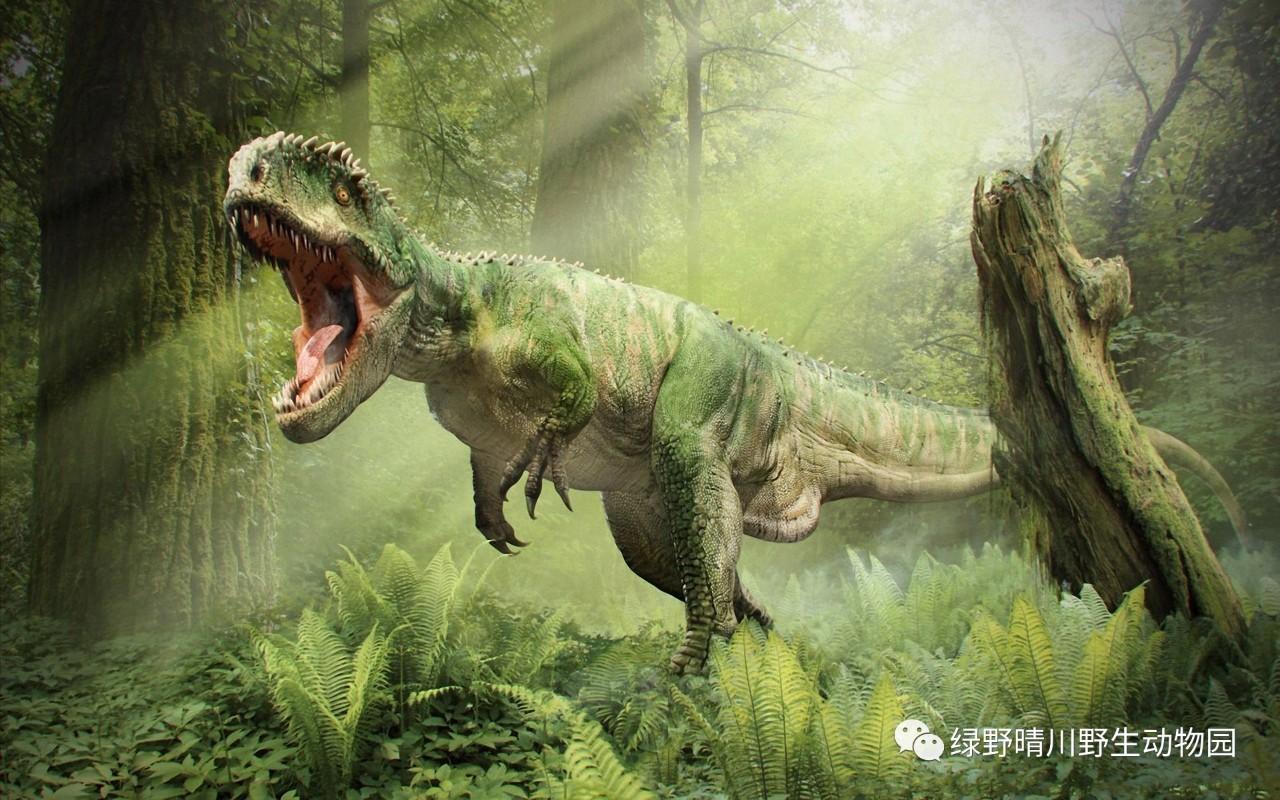 等你两亿年,相聚恐龙山