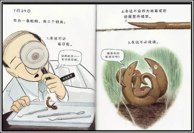 蚯蚓身体结构示意图