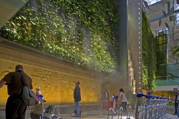 垂直绿化景观墙2