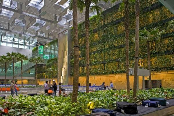 垂直绿化景观墙