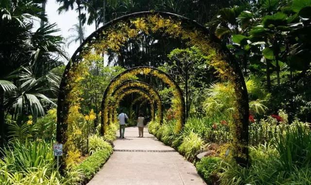 滨海湾花园内花架