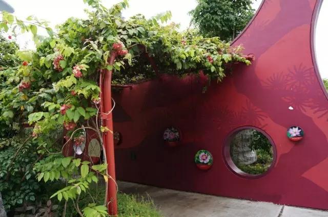 绿化时光隧道