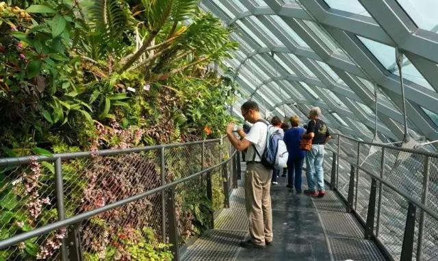 室内绿化温室2