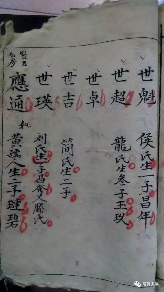 重庆合川廖氏族谱图片