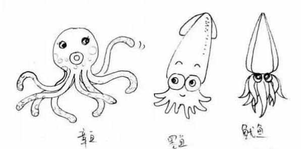 全世界蜗牛的种类约有650种,它们的大小相差极大.章鱼游戏手游官网充值图片