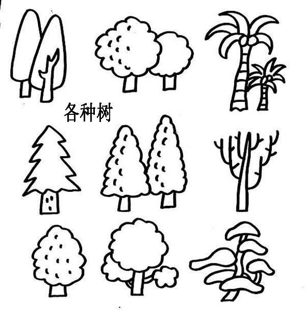 大树简笔画 大树简笔画图片 大树的简笔画