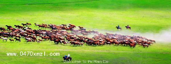 行摄之旅—2017年万马奔腾游牧文化节摄影创作团 - 宁静枫林 - 呼伦贝尔长城摄影旅游俱乐部