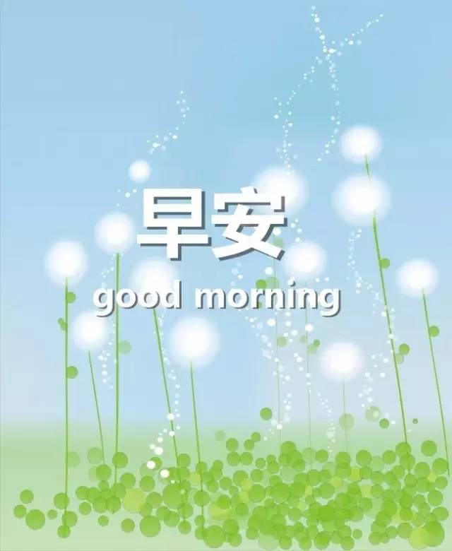 早晨问候语 早晨好图片图片
