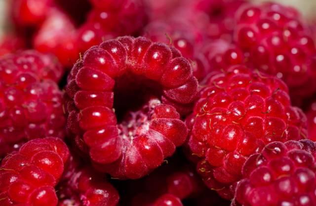 草莓汁果蔬汁水果汁 桑椹果酱草莓果酱枇杷膏杨梅饮... _新浪博客