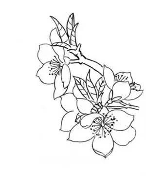 《迎春花》 迎得春来非自足,百花千卉共芬芳.