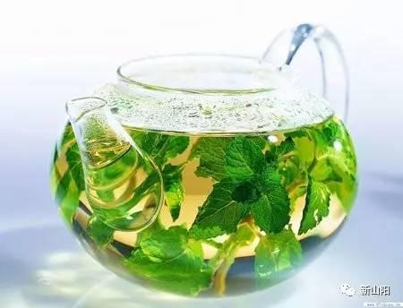 近几年,桑叶泡茶很受欢迎,桑叶泡茶可以有效的治疗胃痛,失眠,上火等图片