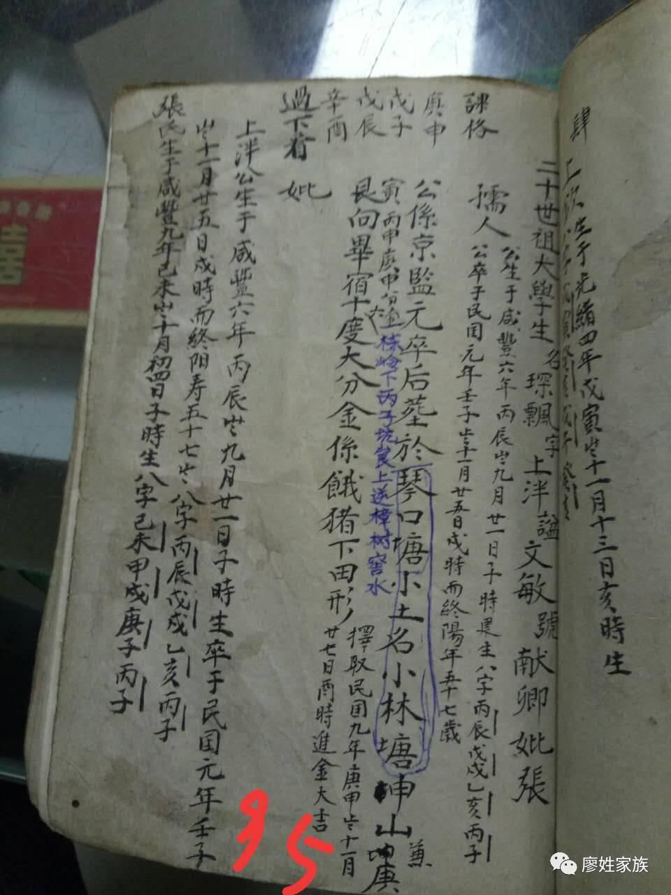 江西吉安廖氏家谱图片