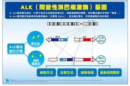 淄博市第四人民医院检验科基因检测实验室成功开展