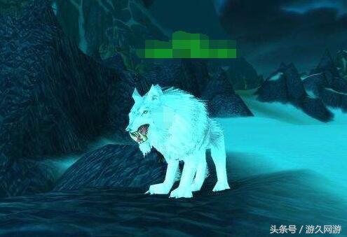 真佩服现在的游戏设计师 这样的奇葩宠物都做的出来