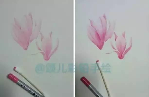 彩铅步骤:玉兰花儿