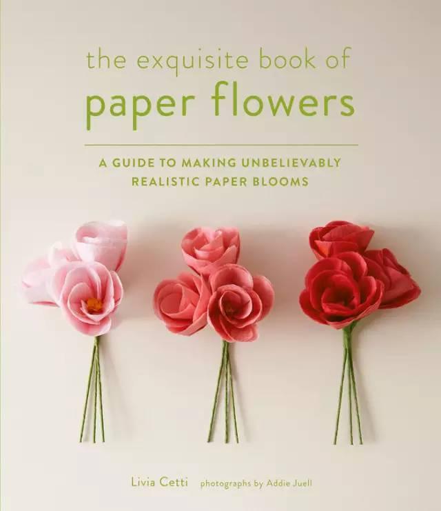 今日小编就来教,如何去折纸一朵漂亮的玫瑰花!