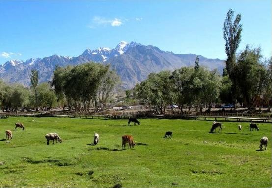 新疆多少平方公里人口多少