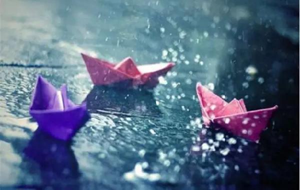 绿化贷两周年:感受绿化贷的风风雨雨