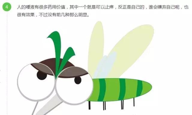 有了泰国纯天然青草膏,从此告别蚊虫叮咬! 生活方式 图5