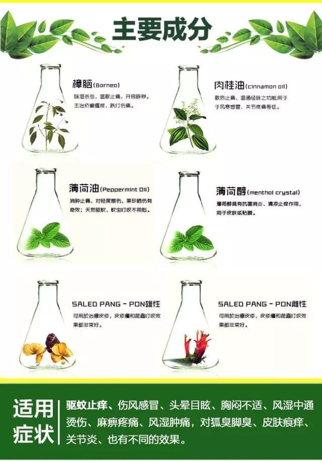 有了泰国纯天然青草膏,从此告别蚊虫叮咬! 生活方式 图10