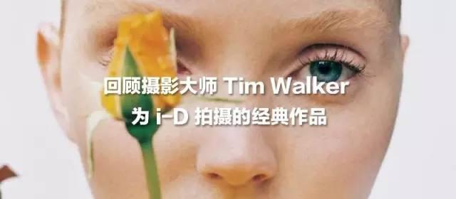 Wes Anderson 回来了!最新电影《犬之岛》公布了定档日期与海报 风格偶像 图5
