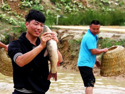 """佛山西樵捕鱼节开渔,游客争当""""乡村渔夫"""""""