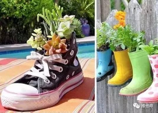 """多肉联""""萌"""",旧高跟鞋diy变身创意花盆"""
