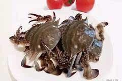 福建最好吃的50种海鲜
