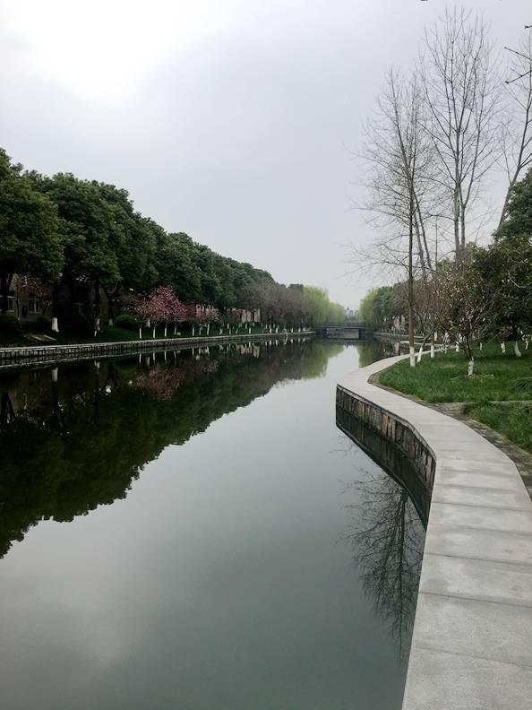 新塘人口最多地方_人口普查