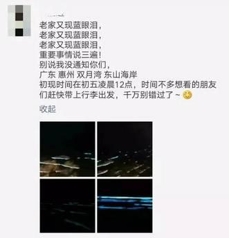 从广州出发3小时,看 蓝眼泪 奇景,整片海都在发光 美翻了...图片 12250 331x344