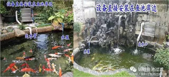 设备直接也可以安装在水池里面,但设备的出水口一定要高于鱼池的水面图片