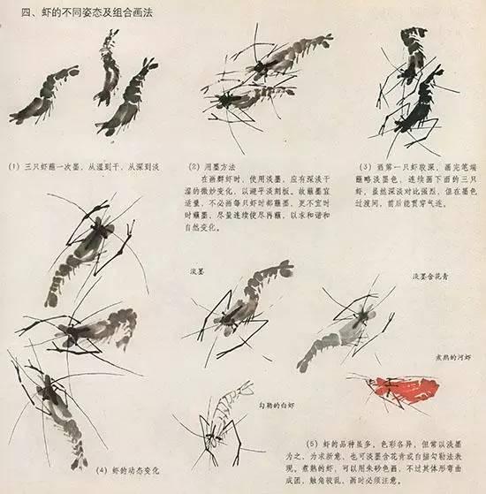 法 几种虫儿的画法