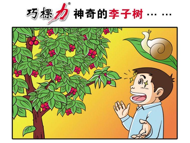 神奇的李子树下炼真经(颗粒水溶肥第1人巧棵力)图片