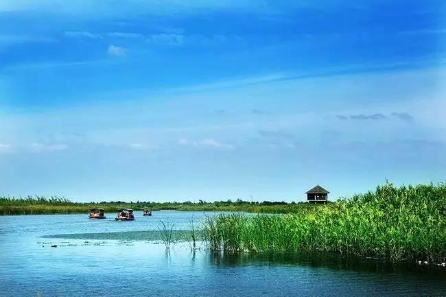旅游 正文  宁波杭州湾国家湿地公园位于杭州湾跨海大桥西侧,属于中国图片