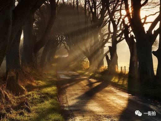 摄影课程第六课:摄影技巧之光线的运用 生活方式 图19