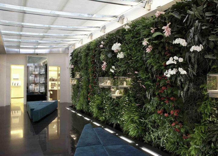 色彩解析室内植物墙