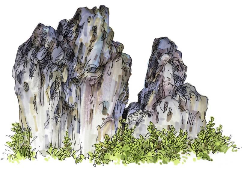 筑界绘|夏克梁:建筑,景观手绘图中配景的作用与表现 ——以植物和石头