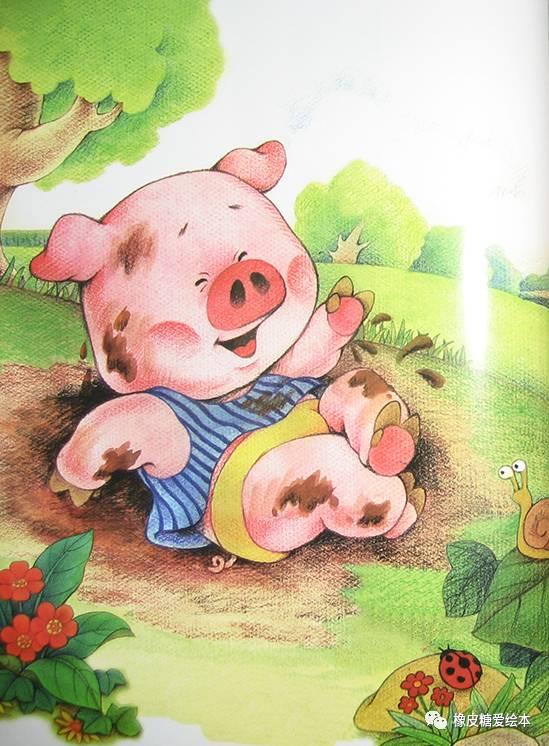 如何养一只可爱的小猪?