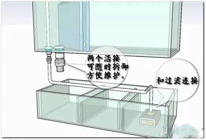 缸养锦鲤须知物理过滤的重要图片