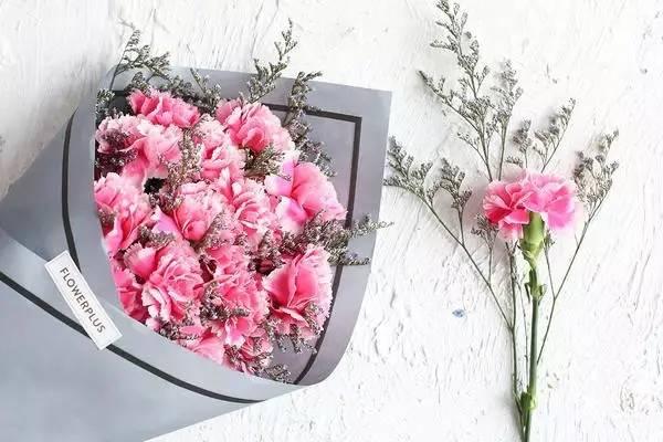 康乃馨满天星图片唯美-母亲节 特别的爱送给特别的你